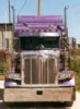 "FLIPPERS WESTERN STAR 85"" with Heritage Sleeper"